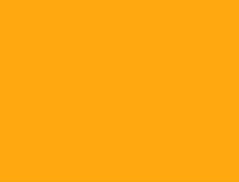 orange2-480x360